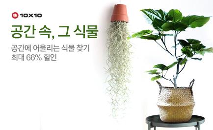 텐바이텐 공간에 어울리는 식물 찾기 배너이미지3
