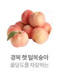 경북 햇 털복숭아 이미지